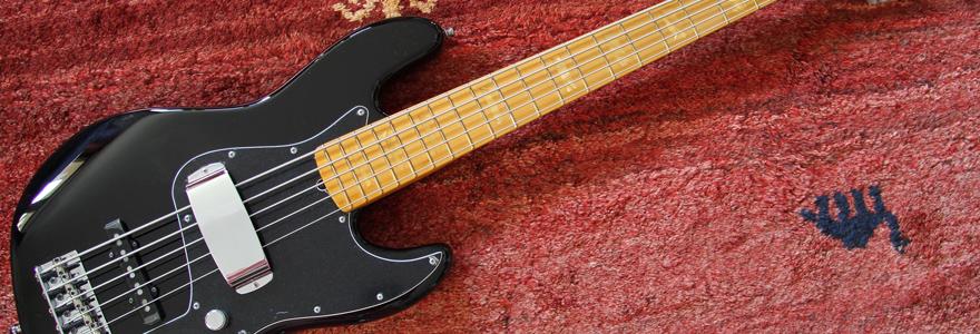 les bassistes